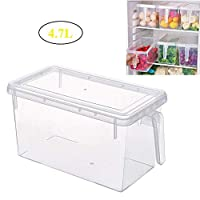 AIWANTO Transparent Rectangular Food Storage Containers with Lid and Handle, Refrigerator Organizer Box Space Saver Household Fresh-Keeping Box for Kitchen Food (4.7L Capacity)