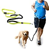 Jogging Hundeleine Freihandleine Joggingleine mit Bauchgurt Verstellbare Sport Laufgürtel aus Nylon Ideal für Laufen Joggen Wandern und Markteinkauf (Gelb)