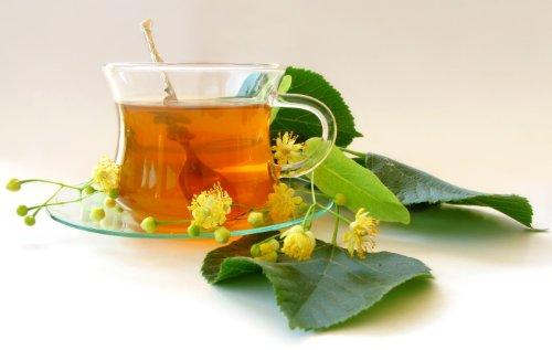 Olive Leaf Tea Infuser GRATUIT aromatisé avec un soupçon de menthe naturelle fait 60 + Coupes