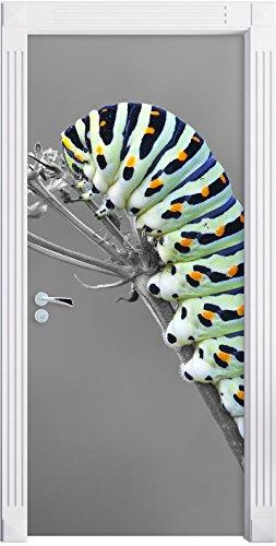 Grüne Raupe auf Ast Insekten Urwald Tiere schwarz/weiß als Türtapete, Format: 200x90cm, Türbild, Türaufkleber, Tür Deko, Türsticker