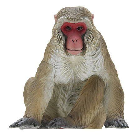 creature-01-2-japanese-monkey-of-nature-technicolor-nature-of-japan-japan-single-by-kitan-club