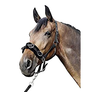 HKM Kappzaum aus Nylon mit Plüschpolsterung, schwarz, Pony