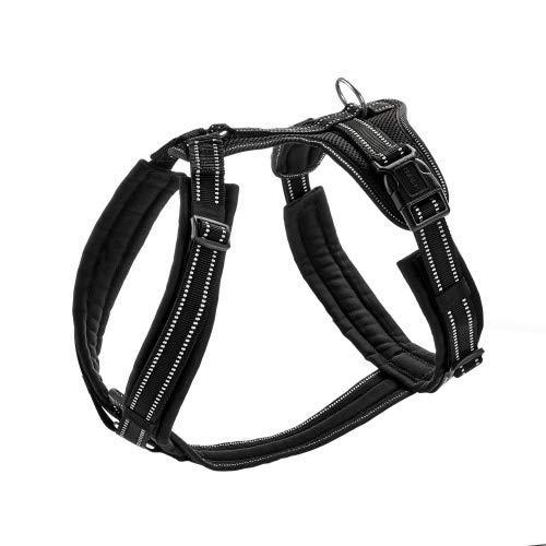 HUNTER MALDON Hundegeschirr, gepolstert, reflektierend, für Sport und Freizeit, XL, schwarz
