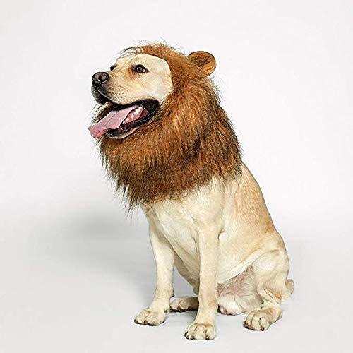 Godea Löwenmähne - realistische und lustige Löwenmähne für Hunde - ergänzende Löwenmähne für Hundekostüme - Löwenperücke für mittelgroße bis große Hunde Löwenmähne Perücke für Hunde