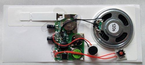 Aufnahme- und Abspiel-Modul für Grußkarten - 120 Sekunden