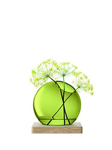 LSA International Olive Axis Vase und Esche Sockel, Grün, 22cm hoch (International Olive)