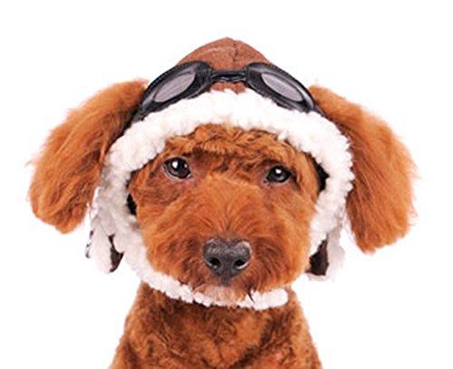 DOGO DESIGN Dogge Aviator Hat für Katze Hund Welpen, XS