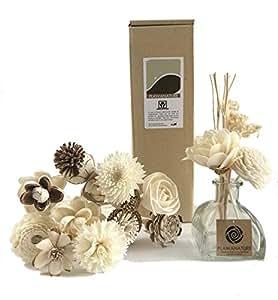 Exotic Plawanature, set da 12 fiori in legno, Sola, con diffusore di fragranza per casa