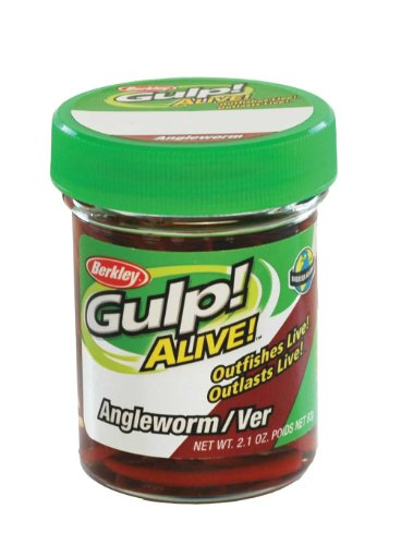 Berkley Gulp Angelworm Red Wiggler 60g - Futterimitate