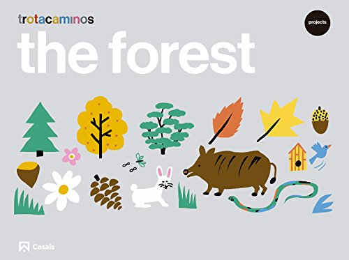 The forest 4 years Trotacaminos