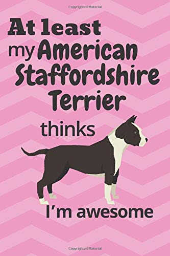 At least My American Staffordshire Terrier thinks I'm awesome: For American Staffordshire Terrier Dog Fans