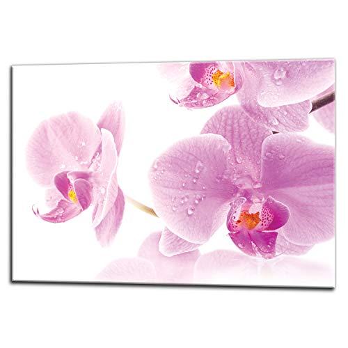 Küchenrückwand, Glas Spritzschutz, 75 x 60 cm, Orchidee, UltraClear ® Glass