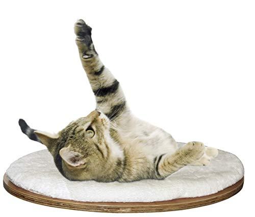 A sus gatos les encantará jugar y descansar en esta práctica y elegante cama para gatos de pared Dolomit de Kerbl. La cama para mascotas montada en la pared es muy fácil de instalar en la pared, lo que ahorra mucho espacio en su casa y encajará con s...