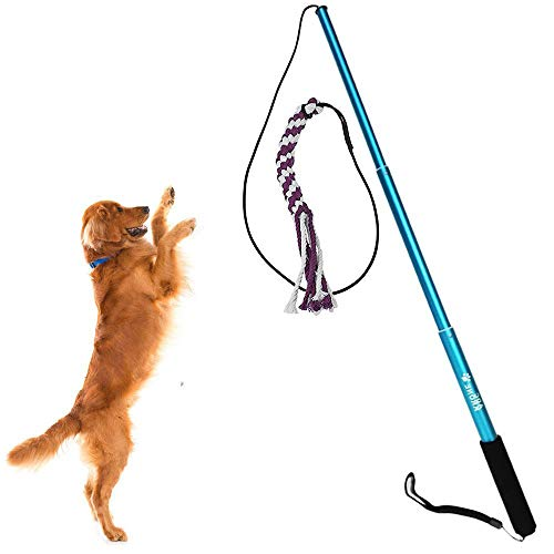 Beautiful Pine Flirt Pole Rope Tug Hundespielzeug Stock Retrattile Cat Teaser Training Play Schläger Pet Teaser und Ginnico für Haustiere