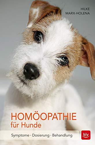 Homöopathie für Hunde: Symptome | Dosierung | Behandlung (BLV)