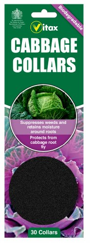 vitax-pack-of-30-biodegradeable-cabbage-collars-protects-brassicas-from-cabbage-rot-fly