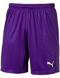 502c8ce787fe Puma Men s Liga Shorts Core With Brief Training