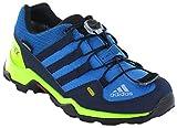 Adidas Terrex GTX K, Zapatillas de Senderismo Unisex niño, Azul (Azretr/Maruni / Limsol 000), 36 2/3 EU