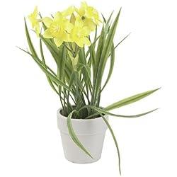 Steinigke Showtechnic Euro Palms Narciso, 22 cm, Planta Artificial