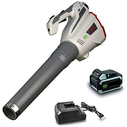 Ikra 74003006 - Soplador de hojas con batería IAB 40-25, incluye batería de 40 V y cargador, botón...