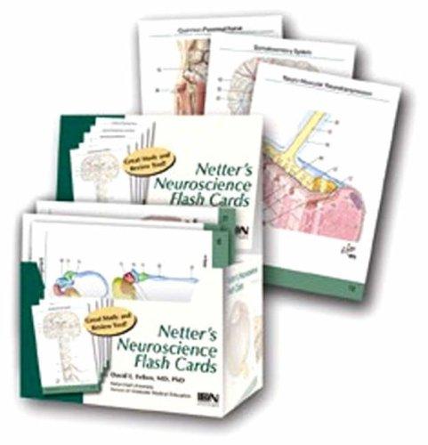 Netter's Neuroscience Flash Cards, 1e (Netter Basic Science) by David L. Felten (2004-12-15)