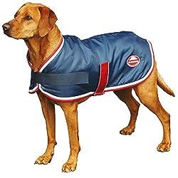 Weatherbeeta Windbreaker 420D Dog Coat Ii - Navy/Red/White - Size: 55Cm