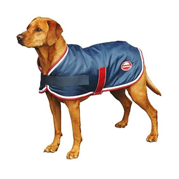 Weatherbeeta Showerproof Dog rug navy/red/white 1