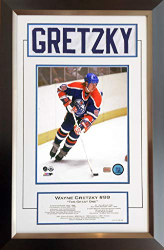 Generic Wayne Gretzky Career Collectible White Namebar Ltd Ed #99/99 - Museum Framed -
