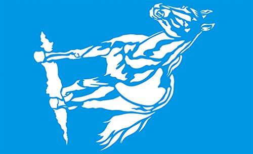 Preisvergleich Produktbild 34cm x 21cm Flexibel Kunststoff Universal Schablone - Wand Airbrush Möbel Textil Decor Dekorative Muster Design Kunst Handwerk Zeichenschablone Wandschablone - Pferd Pony