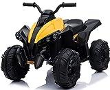 Trendsky ATV Kinder Quad Motorrad Elektrofahrzeug Bike Kindermotorrad Elektromotorrad Pocket