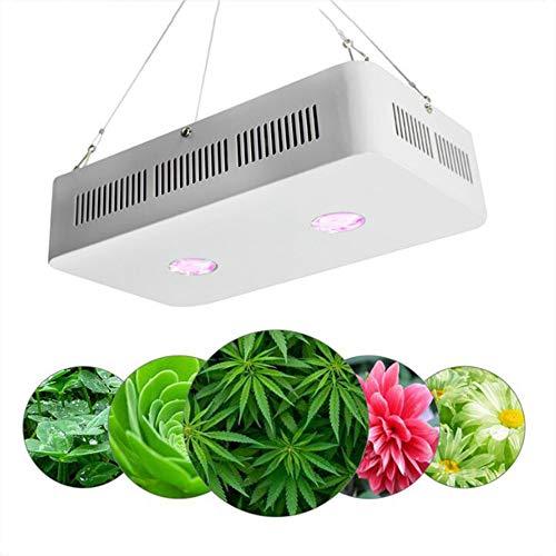 Optical Series LED Pflanzenlampe 200W Dual LED Grow Light Full Spectrum Wachsen Für Zimmerpflanzen Gemüse Und Blumen/ 315X175x85(Mm)