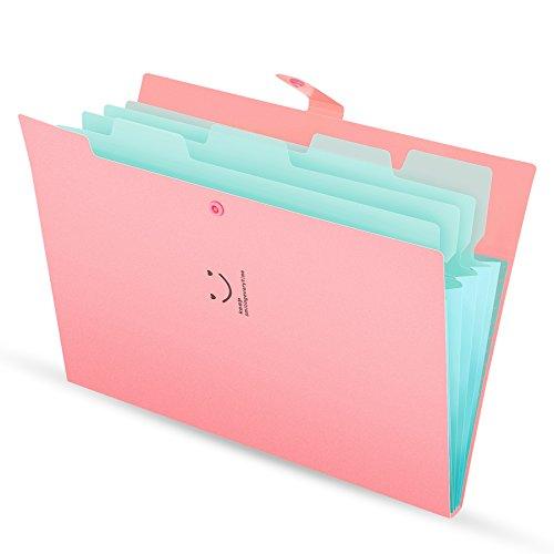 Fächermappe 4 Fächer A4 Ordner Dokumentenmappe PP Erweitern Schulordner dokumente organizer Pink...