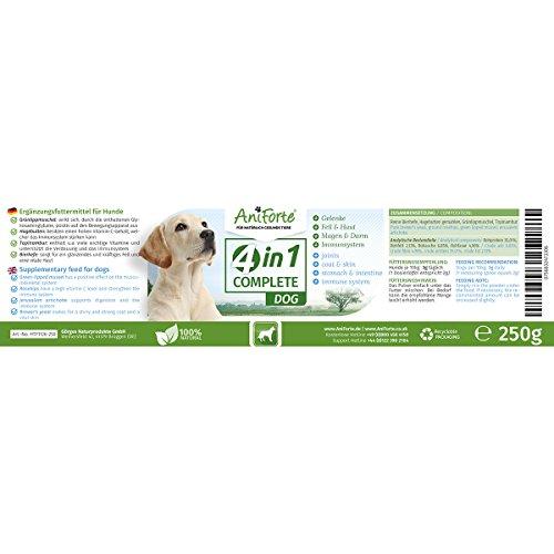 41Fy vTZEEL - AniForte 4in1 Complete 250 gr. Condroprotector 100% Natural. Articulaciones y Movilidad. Antioxidantes, Prebióticos, Vitaminas, Zinc y Hierro. Suplemento para Perros.