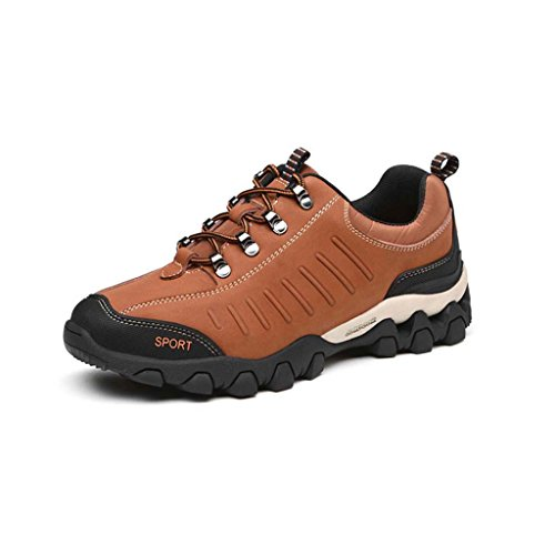 ZXCV Chaussures de plein air Four Seasons Chaussures de randonnée pour sport en plein air pour hommes Chaussures décontractées pour hommes ( Couleur : Bleu , taille : 43 ) Marron