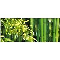 Wallario Premium Glasbild Bambuswald mit grünen Bambuspflanzen Asien 125 x 50 cm