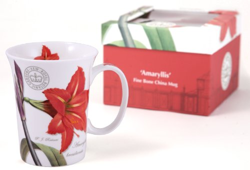 Tasse de Porcelaine Fine 'Amaryllis' avec Boîte à Cadeau