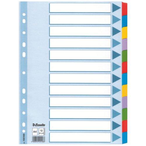 Leitz Kartonregister Blanko, A4, Karton, 12 Blatt, weiss