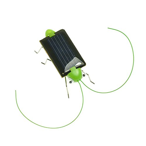 Newin Star Solar Powered Grasshopper/Cricket Solar Power Energy schwarz Schabe Bug Spielzeug für Kinder