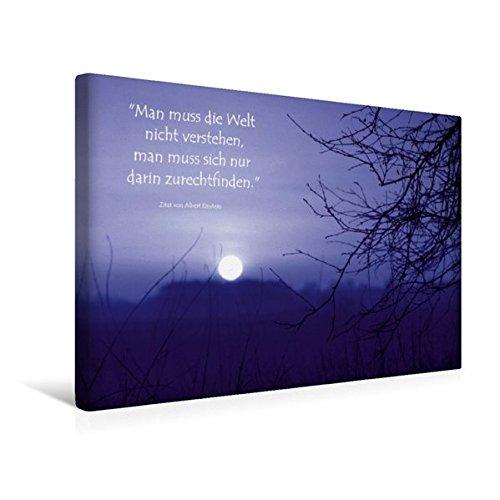 Calvendo Premium Textil-Leinwand 45 cm x 30 cm Quer, Mystischer Sonnenuntergang im Teufelsmoor | Wandbild, Bild auf Keilrahmen, Fertigbild auf Echter Leinwand. Zitat von Albert Einstein Kunst Kunst