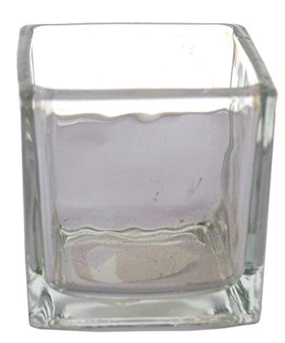 Fourwalls Square Glass Vase (8 cm x 8 cm x 8 cm,...