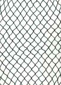 *Katzenschutznetz Katzennetz Balkonnetz Netz Freigang 2x 5m*