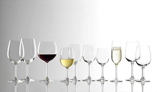 Stlzle-Lausitz-Burgunder-Rotweinglas-Weinland-650ml-6er-Set-Weinglas-hochwertige-Qualitt-splmaschinenfeste-Burgunderglser-bauchige-Rotweinballons