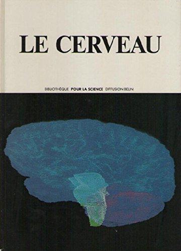 Le Cerveau (Bibliothèque Pour la science) par David Hubel
