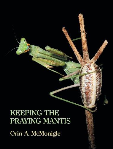Keeping the Praying Mantis: Mantodean Captive Biology, Reproduction, and Husbandry