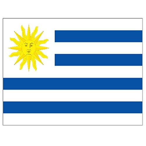 Supportershop Drapeau Uruguay polyester avec 2 œillets metalliques - 150 x 90 cm Supportershop
