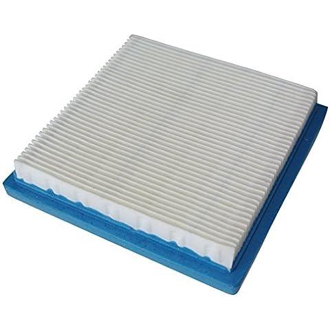 Generic Filtro Dell'aria Cartouche Cleaner Per Briggs & Stratton 399877,399877S, 4103 Per les moteurs 3.5HP Quantum