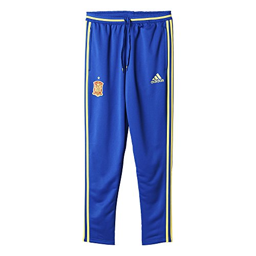 adidas Herren Fuβballhose FEF Training Pants Hose, Collegiate Royal/Bright Yellow, M -