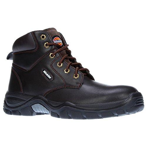 Scarpe Antinfortunistiche Da Uomo Dickies Newark / Stivali Di Sicurezza Marroni