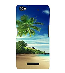 PrintVisa Travel Beach Art Design 3D Hard Polycarbonate Designer Back Case Cover for Micromax CanvasHue2A316