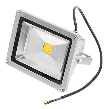- 20W Ampoule Led lumière blanche chaud 3000 K Lampe Flood AC110/220 V